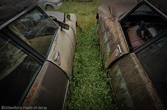 """Citron DS : The ultimate classic car"". (rondelezromario) Tags: cars abandoned nature nikon decay citroen ds urbex followme f4f nikonphotography d7000"