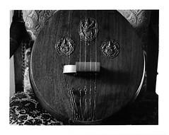 Va - style de Trivandrum - Kerala - India (JJ_REY) Tags: france fuji colmar alsace musicinstrument veena carnatic rodenstock instantfilm peelapart 45a fp3000b southindianmusic toyofield polaroidback405 rotelar270mmf56 vna