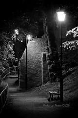 (Px4u by Team Cu29) Tags: park nacht bank zaun baum einsamkeit einsam verloren gelnder leere allein neuburganderdonau strasenlaterne