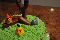Angry Birds Cake by Vicki H 2