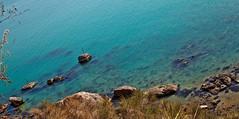 Polinesia????...NO...Ortona!!!! (IntoTheWild1979) Tags: travel sea sky italy dog water cane children mare bambini cielo acqua viaggi abruzzo cimitero ortona