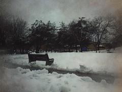 Spring snow bench.