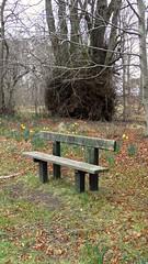 Comfy Seat? (IrenicRhonda) Tags: game public geotagged march scotland highlands unitedkingdom brodie escocia pre done dyke 2012 schottland ecosse gbr u3a gamewinner highlandsandislands redbubble lascozia  pregamewinner forresward 12march2012 geo:lat=5759727167 geo:lon=371105500 notsentgetty