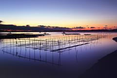 Prelude (y2-hiro) Tags: sea reflection colors sunrise nikon le d3s