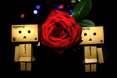 Big Red Rose with Danboard. (HUANG.)