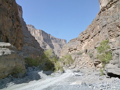 View from the floor of Wadi An Nakhur, Arabia's Grand Canyon (John Steedman) Tags: oman wadi  sultanateofoman      nakhur wadiannakhur wadialnakhur