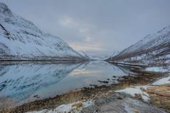 Perfect Mirror, Senja (Daniel J. Mueller) Tags: light mountain snow reflection grass norway clouds fjord hdr senja 7xp d3s