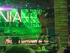 WWE Wrestlemania 28 - Undertaker vs HHH