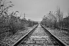 DSC_9694.jpg (WhitePixels Photography) Tags: building landscape flickr published revel behance whitepixels