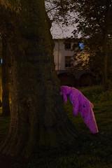 Nachtkonijn 4 (Luie Druif) Tags: longexposure pink night utrecht nacht nachtkonijn urbunny