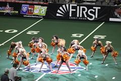 AZ Sidewinders 2014 (Ronald D Morrison) Tags: phoenix cheerleaders dancers photoshoot legs afl arizonarattlers professionalfootball arenafootballleague aflcheerleaders professionalfootballcheerleaders arizonasidewindersdancers