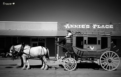 Le voyage continue <> The voyage is on going. (France-) Tags: arizona bw horse monochrome wheel cheval carriage noiretblanc tombstone nb historic western histoire wildwest stagecoach diligence roue historique 902 vhicule carriole