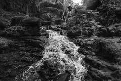 (LloydRussell) Tags: hawaii queensbath fujixpro2 fuji16f14wr