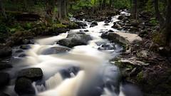 Creek (Juho Mkinen) Tags: longexposure summer water creek forest espoo suomi finland river woods nikon sigma 1750 f28 hoya kes espoonkartano d7100 nd500