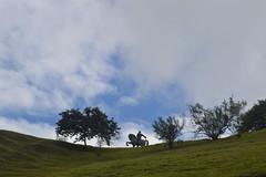 Adelantado Sebastin de Belalczar en el Morro del Tulcn (Alejandro Estrada Lpez) Tags: en del de nikon el morro sebastin popayn d3200 adelantado belalczar tulcn