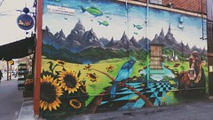 Street art in montreal (adam_moralee) Tags: street canada art beautiful mobile montreal graffitti stunning colourful streetphotographystreet sonyxperia adammoralee adammoalee