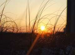 A U R O R A (sarahk5446) Tags: ocean travel sea summer orange beach nature sunrise mexico key waves gulf wind florida alabama adventure shore shores bless pensacola perdido sppring