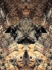 P5210506 (dbillian) Tags: abstract temple cambodia tomb surreal siem reap thom angkor bayon raider
