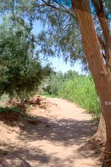 065 (Michael Williams Photography) Tags: atlasmountains morocco marrakech approved ouarzazate saharadesert atbenhaddou doorofthedesert siteofnumerousmovies exampleslawrenceofarabiajewelofthenilelasttempationofchristgladiatorusedinpartsofgameofthrones