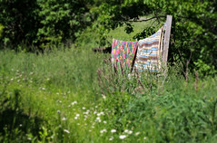 Air Dry (Doris Burfind) Tags: green nature quilt outdoor farm laundry clothesline patchwork hillsburgh everdalefarm