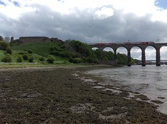 Royal Border Bridge and Old Castle, Berwick upon Tweed (andreboeni) Tags: bridge castle train river border ruin royal trains estuary viaduct virgin northumberland raft berwick tweed eastcoast 125 berwickupontweed hst mainline