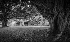Deer Abbey (avaird44) Tags: scotland aberdeenshire deerabbey olddeer