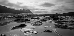 Svínafellsjökull lagoon panoramic (b/w) (wanderingYew2 (thanks for 3M+ views!)) Tags: blackandwhite 120 film mediumformat iceland nationalpark panoramic glacier iceberg filmscan vatnajökull panoramiccamera blackandwhitefilm 21panoramic glaciallagoon 6x12 vatnajökullglacier svínafellsjökull svínafellsjökullglacier vatnajökulsþjóðgarður vatnajökullnationalpark horseman6x12panoramiccamera horseman612panoramiccamera
