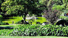 Japanese Friendship Garden (Jim Getchell) Tags: 16x9