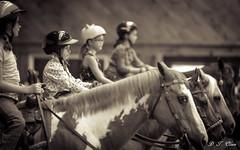 Show day-39 (Webbed Foot Photo) Tags: horses horse pennsylvania ponycamp webbedfootphotography pentaxk1 opengateranch darrenolsen dtolsen webbedfootphoto hunterhillsfarm