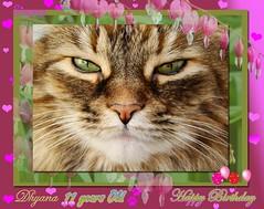 Happy Birthday my baby Dhyana !
