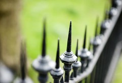 Fence Friday (Magdalen Green Photography) Tags: cool dof spiked 2249 coolgreen iaingordon fencefriday magdalengreenphotography fencewithspikes