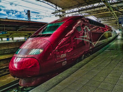 TGV Thalys ~ Brussels-South railway station (SergeK ) Tags: brussels paris station train belgium belgique railway international tgv highspeed thalys brusselssouth sergek