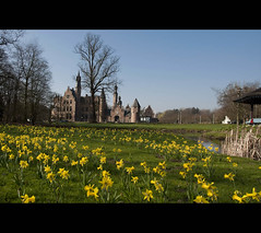 Blooming Beauty ..... (*Lie ... on a short break ... !) Tags: park castle yellow jaune spring belgi gelb lente geel chteau parc printemps daffodils antwerpen burg frhling kasteel jonquilles narzissen deurne terrivierenhof narcissen vlaanderen myhometown frhjahr paasbloemen sterckshof