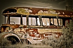 The day after the storm (Claudio Paterlini) Tags: storm bus grass vintage tormenta colectivo transporte cesped mercedezbenz pinturavieja