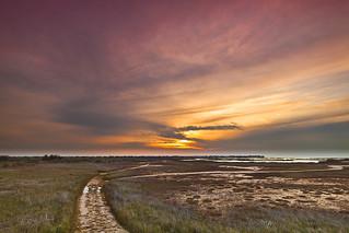 Galveston Island Park Sunset
