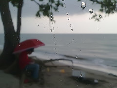 What Happen There???... (Haryth Hayqal) Tags: red sea tree nature water rain coast fishing scenery rainy droplet waterdroplets