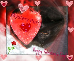 Mystery Purrs Happy Valentine's Day! (silverbox2: Willow Is Purring) Tags: eye ariel mystery cat feline heart sweet valentine hann tortie tortishell valentinesday purrs