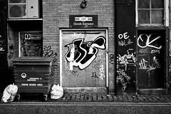 Goods Entrance (ChrisJohnston82) Tags: street door urban blackandwhite bw building shop writing canon eos graffiti mono blackwhite bucket edinburgh entrance backstreet bin citycenter canoneos citycentre towncentre tollcross wheelybin 400d canoneos400d canon400d