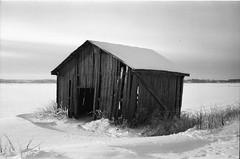 windswept (Foide) Tags: film analog plain canonet ql17 blackdiamond adox söderfjärden