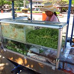 "Street Papaya Salad <a style=""margin-left:10px; font-size:0.8em;"" href=""http://www.flickr.com/photos/14315427@N00/6969054372/"" target=""_blank"">@flickr</a>"