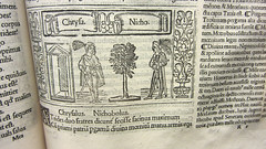 Plauto - Bacchides (DivesGallaecia) Tags: santacruz book libro valladolid biblioteca liber plautus plauto bacchides