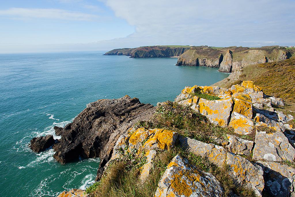 Gash Breccia - Pembrokeshire