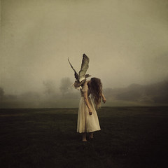 to lift her up (brookeshaden) Tags: bird fog fly duck wings earlymorning scenic whimsical fineartphotography darkfairytale brookeshaden texturesbylesbrumes