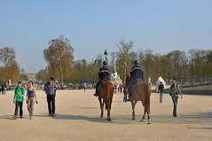 Paris : Tuileries Garden (Pantchoa) Tags: horse paris france garden caballo cheval nikon jardin tuileries d90 gardesrpublicains republicanguard 35mmf18g guardiarepublicana pantchoa ringexcellence