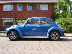 Volkswagen 135021 Beetle - 1973 (oerendhard1) Tags: blue classic car vw bug volkswagen blauw beetle 1973 kfer kever maggiolino 135021