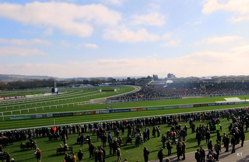 2017 Cheltenham Festival - World Hurdle