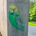 Budgie Graffiti