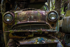 Dazed and confused (Ron Jansen - EyeSeeLight Photography) Tags: old brown green eye classic cemetery car vintage moss eyes rust sweden steel rusty stack grill chrome confused headlight wreck leafs dazed stacked vrmland d810 bstns bastnas