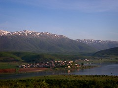 100_1994 (szymek_ka) Tags: e madh vogel gorica prespa jezero liqeni езеро velké галичица преспанско prespës liqeniimadhiprespës prespanské galiçicë