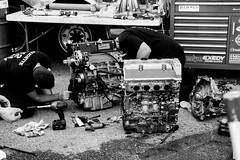 Pirelli World Challenge @CTMPOfficial 2016-169 (Steven Okabe Photography) Tags: boss ford car photography gulf ferrari racing ktm camaro turbo mclaren porsche mercedesbenz shelby carbon audi crossbow v10 302 gt4 vp gtr r8 nismo fibre pirelli mosport ctmp rousch okabe cameroz28 atsv mercedesbenzslsamggt3 pirelliworldchallenge ferrari458italiagt3 audir8lmsultra astonmartinvantagegt3 nissangtrnismogt3 bentleycontinentalgt3 mclaren650sgt3 acuratlxgt atsvr 675lt stevenokabe